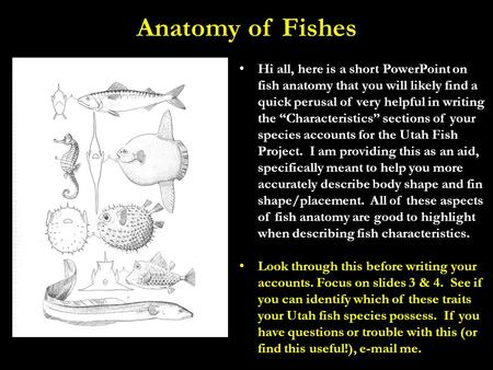 "Anatomy of Fishes Hi all, here is a short PowerPoint on fish anatomy that you will likely find a quick perusal of very helpful in writing the ""Characteristics"""