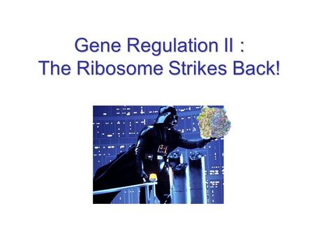 Gene Regulation II : The Ribosome Strikes Back!. Mechanisms Covered Attenuation Control –Tryptophan Biosynthesis Riboswitches –Tryptophan Biosynthesis.