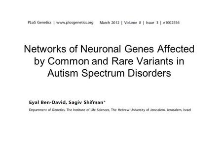 Networks of Neuronal Genes Affected by Common and Rare Variants in Autism Spectrum Disorders.