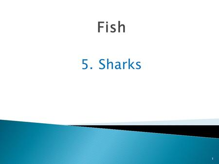 5.Sharks 1. Sharks are fast-swimming fish 2 that glide through water at speeds up to 40 miles an hour.