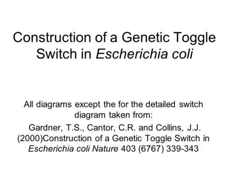 Construction of a Genetic Toggle Switch in Escherichia coli