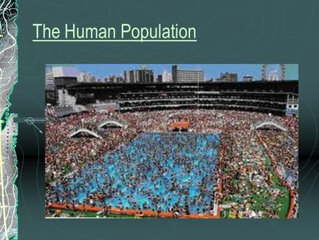 The Human Population Chapter 9 Notes. Developed Nations have strong social support systems (schools, healthcare, etc.), diverse industrial economies,