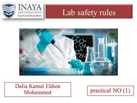 Lab safety rules practical NO (1) Dalia Kamal Eldien Mohammed.