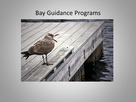 Bay Guidance Programs. The Bay Program partnership includes: 19 federal agencies Nearly 40 state agencies and programs in DE, MD, NY, PA, VA,