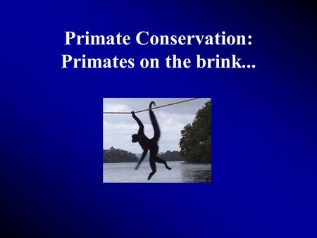 Primate Conservation: Primates on the brink.... Some facts... 80 million or more plants and animals make up world's biodiversity Over half of these species.