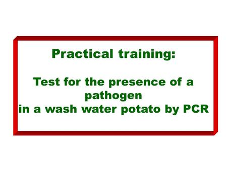 Practical training: Test for the presence of a pathogen in a wash water potato by PCR.