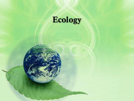 Ecology. What is ecology? Ecology is the scientific study of interactions among organisms and between organisms and their environment, or surroundings.