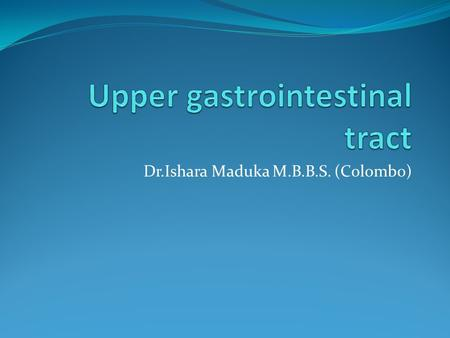 Upper gastrointestinal tract