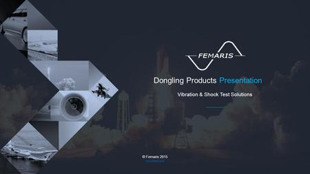 Dongling Products Presentation Vibration & Shock Test Solutions © Femaris 2015 www.femaris.ro.