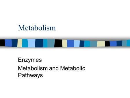 Metabolism Enzymes Metabolism and Metabolic Pathways.