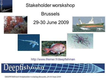 DEEPFISHMAN Stakeholder workshop Brussels, 29-30 June 2009 DEEPFISHMAN Stakeholder worskshop Brussels 29-30 June 2009