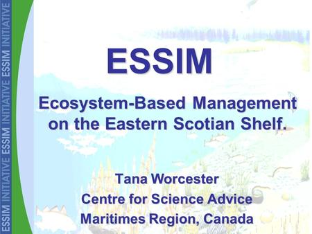 Tana Worcester Centre for Science Advice Maritimes Region, Canada Ecosystem-Based Management on the Eastern Scotian Shelf. ESSIM.