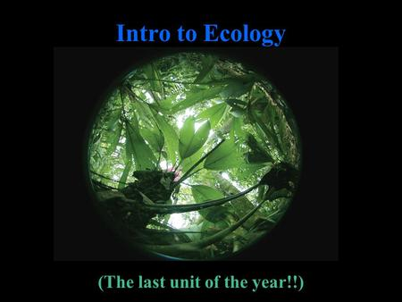 Intro to Ecology (The last unit of the year!!). What Is Ecology?