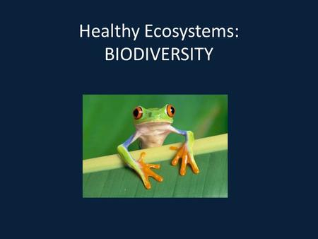 Healthy Ecosystems: BIODIVERSITY. Biodiversity variety of different species of micro-organisms, animals and plants all organisms must interact ecosystems.