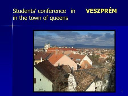 Students' conference in VESZPRÉM in the town of queens 1.