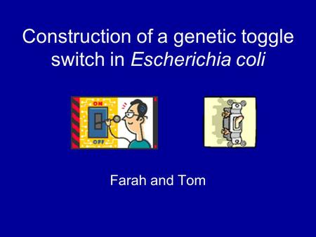 Construction of a genetic toggle switch in Escherichia coli Farah and Tom.