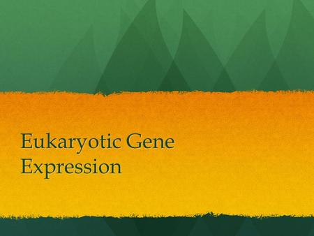 Eukaryotic Gene Expression. The expression of genes found in DNA The expression of genes found in DNA The genes expressed in a particular cell determines.