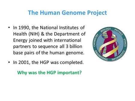 The Human Genome Project In 1990, the National Institutes of Health (NIH) & the Department of Energy joined with international partners to sequence all.