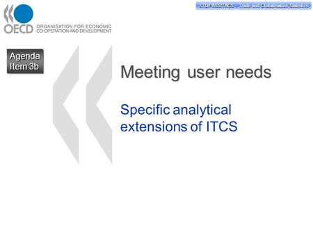 STD/PASS/TAGS – Trade and Globalisation Statistics Meeting user needs Specific analytical extensions of ITCS Agenda Item 3b Agenda.