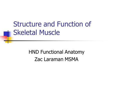 Structure and Function of Skeletal Muscle HND Functional Anatomy Zac Laraman MSMA.
