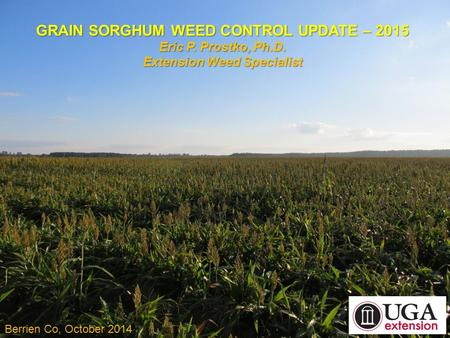 GRAIN SORGHUM WEED CONTROL UPDATE – 2015 Eric P. Prostko, Ph.D. Extension Weed Specialist Berrien Co, October 2014.