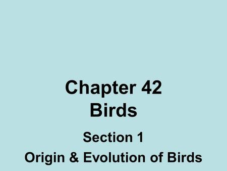 Chapter 42 Birds Section 1 Origin & Evolution of Birds.