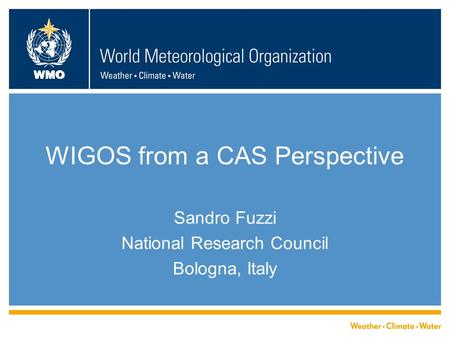 WMO WIGOS from a CAS Perspective Sandro Fuzzi National Research Council Bologna, Italy.