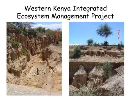 Western Kenya Integrated Ecosystem Management Project.
