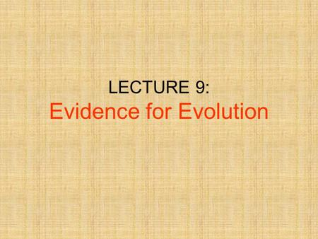LECTURE 9: Evidence for Evolution. 2 Abandoned The Idea That Species Were Perfect & UnchangingAbandoned The Idea That Species Were Perfect & Unchanging.