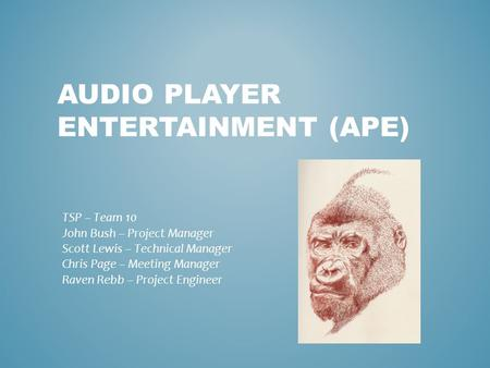 AUDIO PLAYER ENTERTAINMENT (APE) TSP – Team 10 John Bush – Project Manager Scott Lewis – Technical Manager Chris Page – Meeting Manager Raven Rebb – Project.