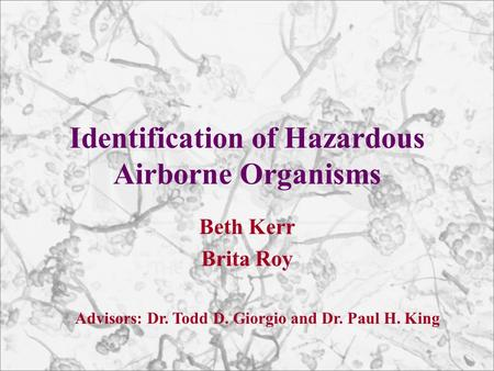 Identification of Hazardous Airborne Organisms Beth Kerr Brita Roy Advisors: Dr. Todd D. Giorgio and Dr. Paul H. King.