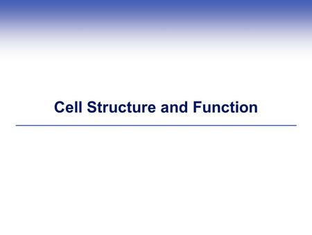 Cell Structure and Function. What is a Cell?  Each cell has a plasma membrane, cytoplasm, and a nucleus (in eukaryotic cells) or a nucleoid (in prokaryotic.