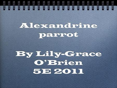 Alexandrine parrot By Lily-Grace O'Brien 5E 2011 By Lily-Grace O'Brien 5E 2011.