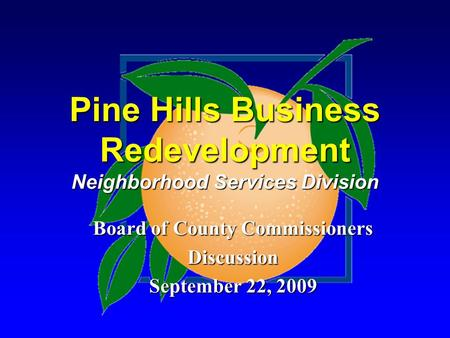 Pine Hills Business Redevelopment Neighborhood Services Division Board of County Commissioners Discussion September 22, 2009.