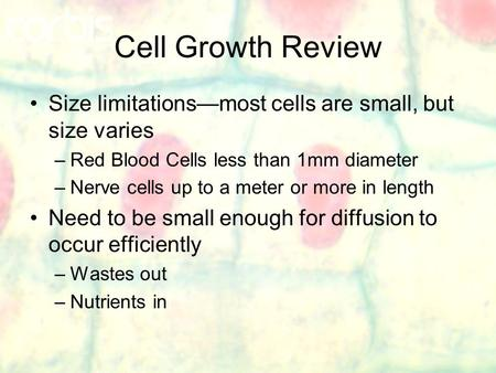 Cell Growth Review Size limitations—most cells are small, but size varies –Red Blood Cells less than 1mm diameter –Nerve cells up to a meter or more in.