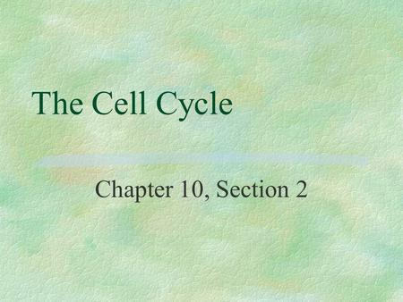 The Cell Cycle Chapter 10, Section 2. Why do cells divide? §For growth, repair, and reproduction.