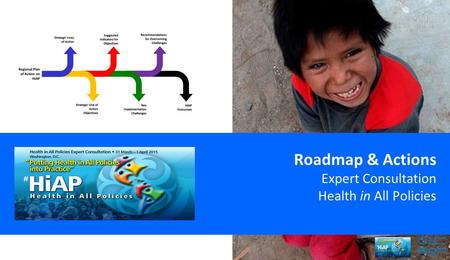 Roadmap & Actions Expert Consultation Health in All Policies.