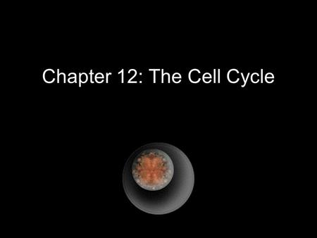 Chapter 12: The Cell Cycle. Cell division functions in reproduction, growth, and repair. Cell Division - the reproduction of cells Cell Cycle - the life.
