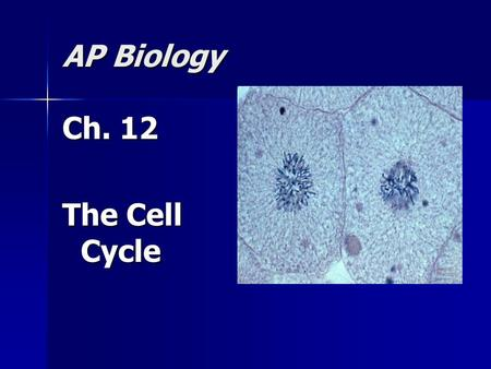 AP Biology Ch. 12 The Cell Cycle. Limits to Cell Growth: Why do cells need to divide? The larger a cell becomes, the more demands the cell places on its.