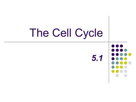 The Cell Cycle 5.1. Background Knowledge Answer the following questions: 1. How many cells do you think your body has? 2. Why does your body need to have.