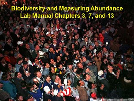 Biodiversity and Measuring Abundance Lab Manual Chapters 3, 7, and 13.