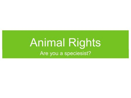 Animal Rights Are you a speciesist?. Animal Rights in the News.
