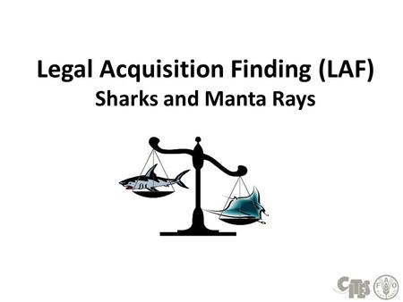 Legal Acquisition Finding (LAF) Sharks and Manta Rays.