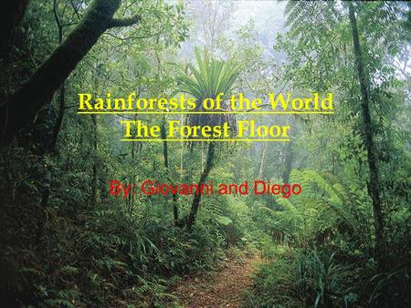 Rainforests of the World The Forest Floor By: Giovanni and Diego.