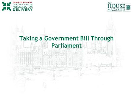 Taking a Government Bill Through Parliament. www.publicsectordelivery.com PRIMARY LEGISLATION Public – Government Bills Public – Private Members' Bills.