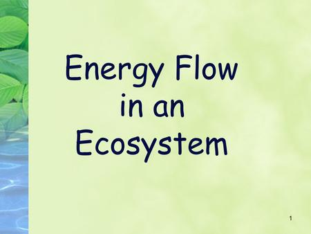 1 Energy Flow in an Ecosystem. 2 Energy Flow Energy in an ecosystem originally comes from the sun Energy flows through Ecosystems from producers to consumers.