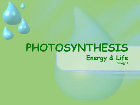 PHOTOSYNTHESIS Energy & Life Biology I. Energy & Life Where does the energy that living things need come from? Plants & other organisms are able to use.