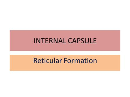 INTERNAL CAPSULE Reticular Formation. Objectives 1.Describe the structure of the internal capsule 2.Identify different areas of the internal capsule 3.Describe.