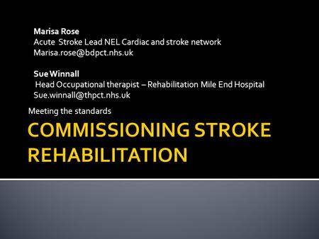 Meeting the standards Marisa Rose Acute Stroke Lead NEL Cardiac and stroke network Sue Winnall Head Occupational therapist – Rehabilitation.