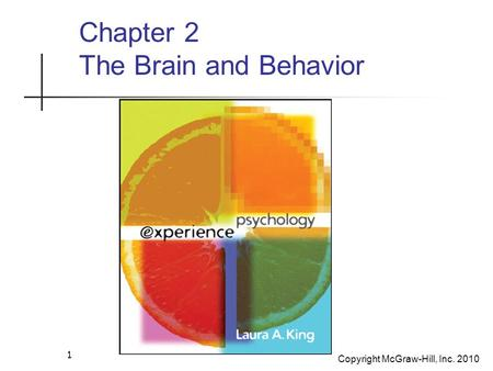 Copyright McGraw-Hill, Inc. 2010 1 Chapter 2 The Brain and Behavior.